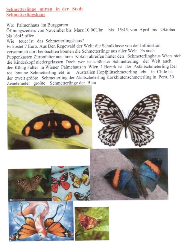 SoschnerChr_20190327_Schmettl